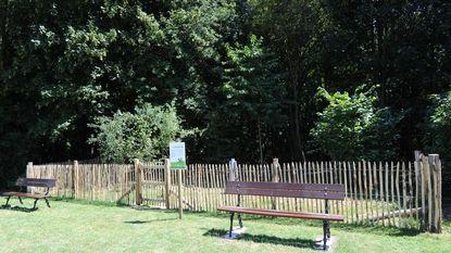 Viervoeters gaan los in nieuwe hondenzone park Drie Fonteinen