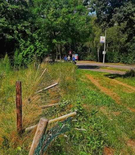 Tractor met grasmaaiwerktuig gestolen in Waalwijk, omheiningen omvergereden
