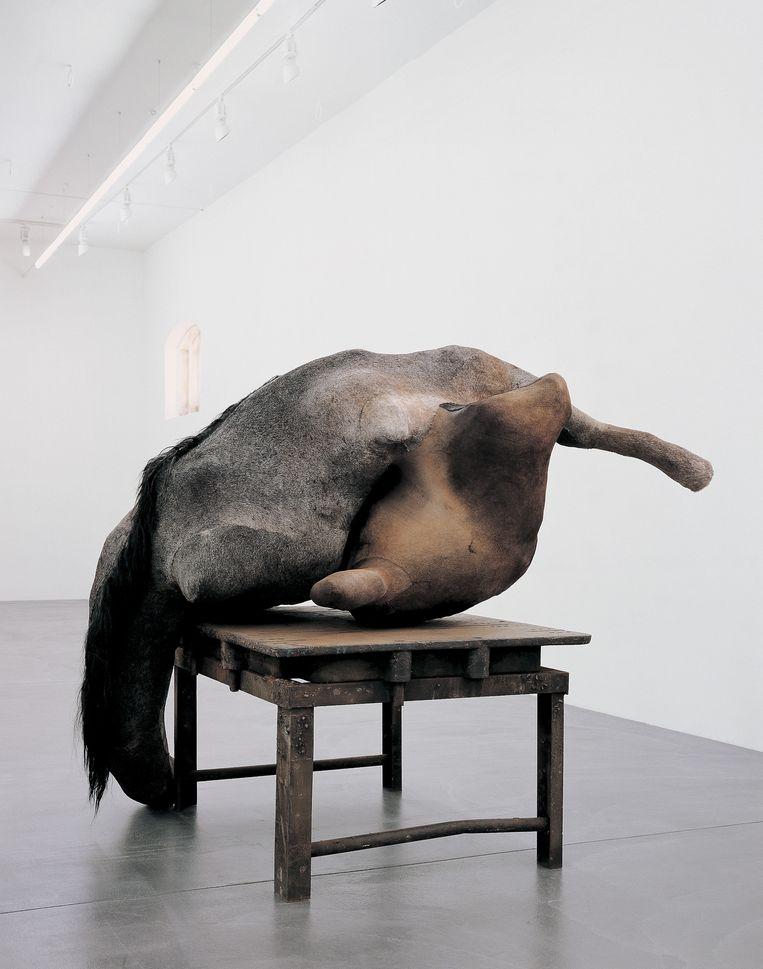 Eén, 2003-2004 (paardenhuid, ijzer, polyester, polyurethaan). Hauser & Wirth Collection. Beeld Mirjam Devriendt