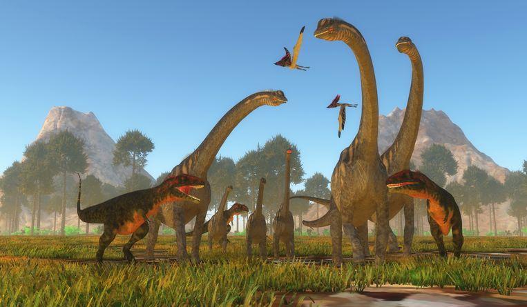 Een groepje sauropoda is omsingeld door drie Mapusaurus dino's.