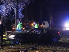 Auto tegen boom gebotst in Hoge Hexel, bestuurder gewond