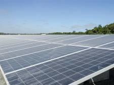 Raad van State: Zonnepark met duizenden panelen mag in Rouveen
