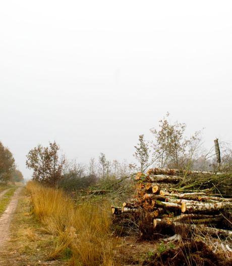 Wandelpaden afgesloten in Engbertsdijksvenen bij Vriezenveen