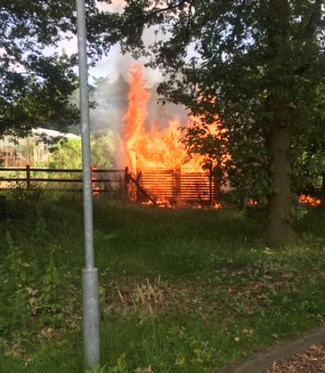 112-storing wordt bijen op terrein Grote Beek Eindhoven noodlottig