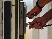 Twintig maanden celstraf voor Eindhovenaar met drie kilo diepvries-amfetamine, vuurwapens en henneptoppen