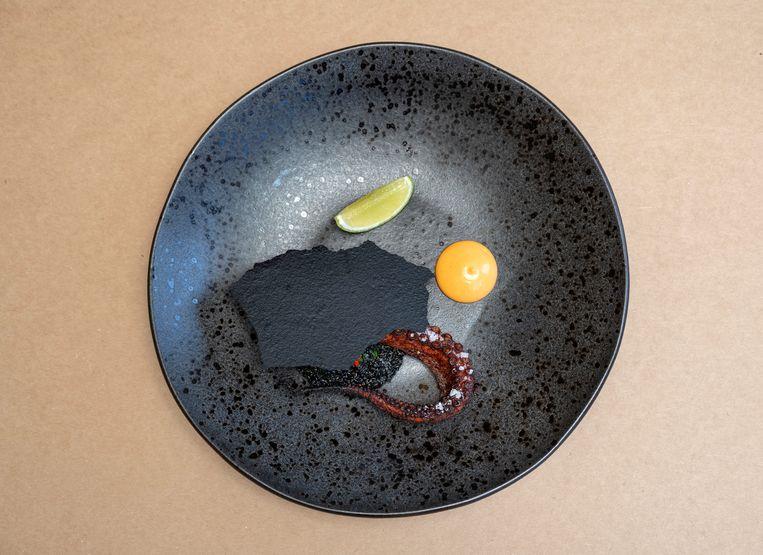 Octopus, quinoa en chimichurri Beeld Els Zweerink