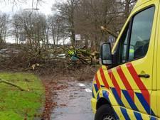 Vrachtwagenchauffeur (62) overlijdt door vallende tak