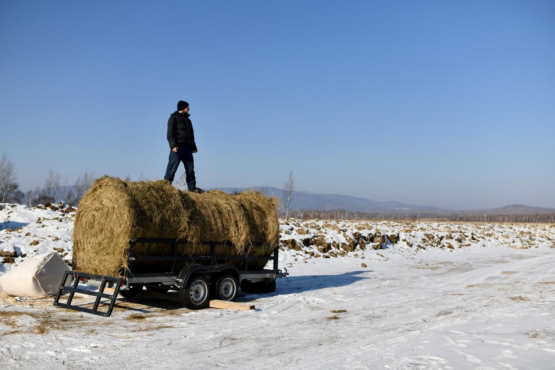 Michaïl Oetrobin boven op een aanhanger met balen hooi, in de regio Chabarovsk. Beeld null