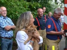 Poes krijgt na dag en nacht miauwen hulp van Apeldoornse brandweer