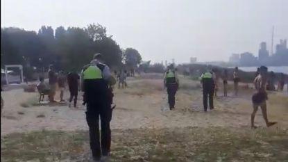Politie rukt massaal uit voor rellen op Antwerps strand van Sint-Anneke