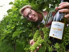 Culemborgse wijnboer Sander (27) eert zijn voorouders met wit, rosé en mousserend