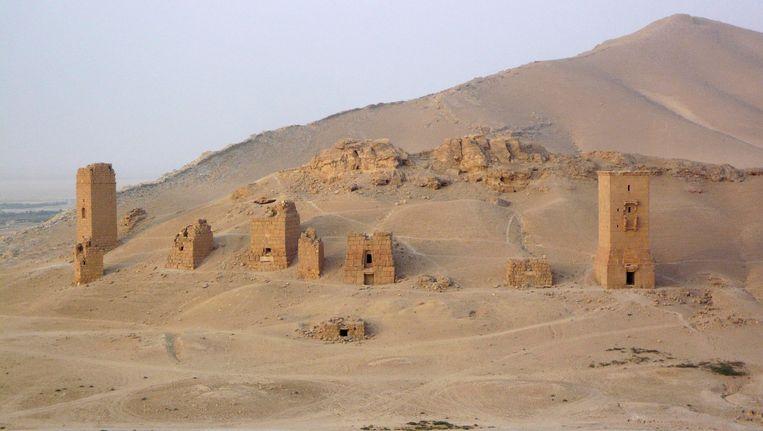 De graftomben in Palmyra op archiefbeeld. Beeld REUTERS