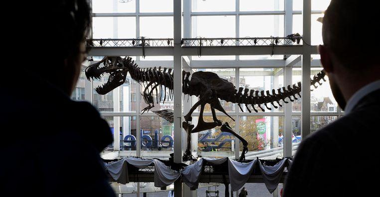 Archiefbeeld van het geraamte van de T. rex die tijdelijk te zien was op het station Leiden Centraal. Beeld anp