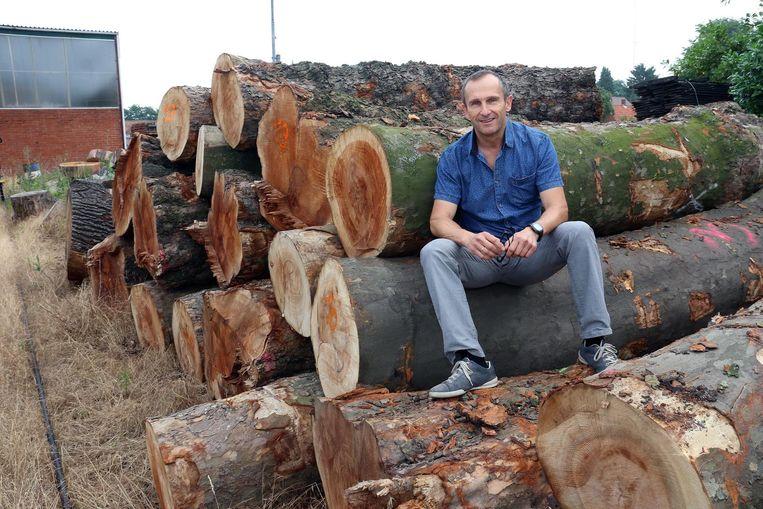 Bert Leysen van het Mechelse bedrijf Bosq bij de boomstammen.