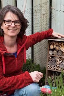 Buurtgenoten vormen 'voedselbankjes' voor bijen