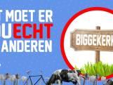 Verkiezingen Biggekerke: 'Er wordt driftig genaaid'