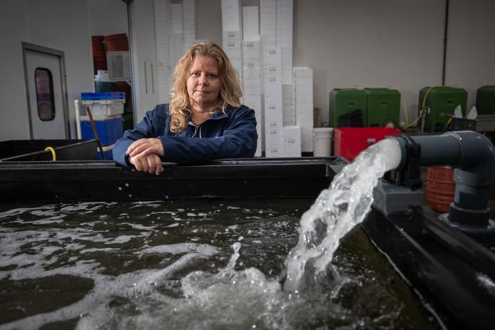 Anja Keuter exporteert normaal wekelijks duizenden kilo's krab naar China.