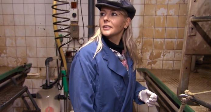 Chantal Janzen is ondergepoept door een koe, tijdens opnames voor haar programma Chantal Komt Werken.