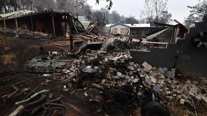 Schade door bosbranden in Australië loopt al op tot 430 miljoen euro