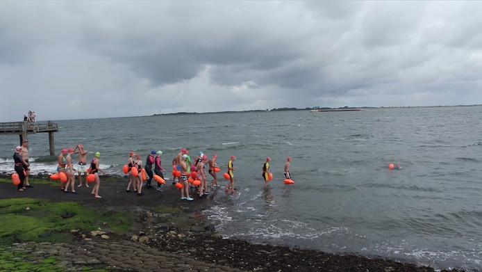 Er gaan zaterdag 17 augustus in Stavenisse toch weer zwemmers te water voor een tocht naar Sint-Annaland.