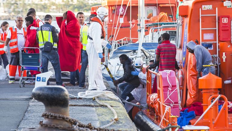 Migranten worden op Gran Canaria door reddingswerkers aan wal geholpen. Beeld reuters