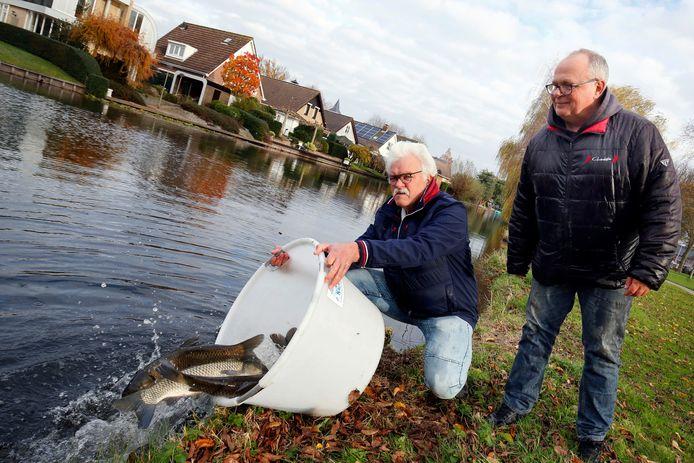 Kees Kool (links), voorzitter van hengelsportvereniging De Snoek, laat graskarpers los in Leerdam-Noord. ,,Zij zijn een natuurlijke manier van grasmaaien.''