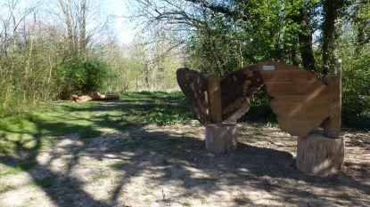 Duurzaam speelplein in parkje Pellenberg klaar, maar kinderen mogen er nog even niet op spelen