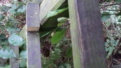 Vandaal saboteert ladder van jagershut met zaag