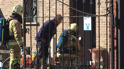 Alerte getuigen blussen brand met tuinslang