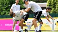 Müller en co. schieten blind op doel