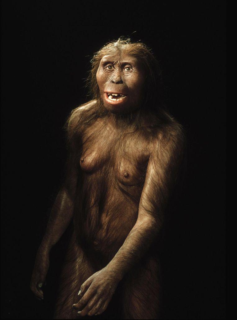 Het uiterlijk van Lucy gereconstrueerd. Deze foto werd in 2006 vrijgegeven door het Chicagos Field Museum. Beeld anp