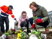 Anne-Britt (11) zorgt er voor dat de tuin van het Deventer Ziekenhuis kleur krijgt