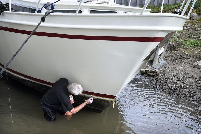 Ook deze eigenaar van een plezierjacht maakt van de nood een deugd: hij schildert een deel van zijn schip onder de waterlijn, waar hij normaliter met kwast en verf niet bij kan komen. Beeld null