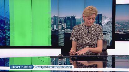 Annelies Van Herck wordt in volle 'Journaal' vervangen