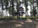 De zwaluwtil in de laagte tussen de bewaard gebleven bomen in Den Bogerd.