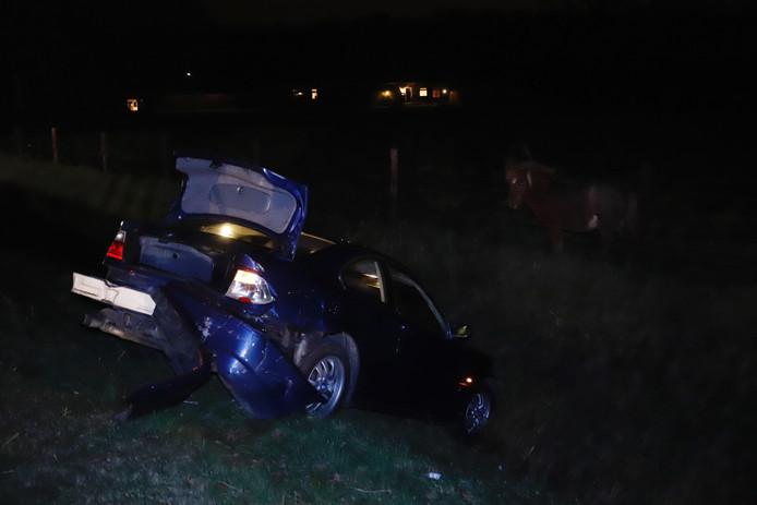 De Poolse bestuurder kwam met zijn auto in de sloot tot stilstand.