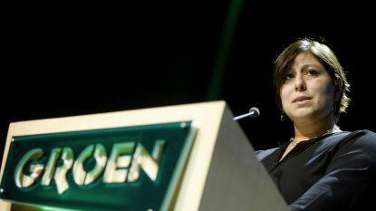 """Groen stelt """"welvaartsgarantie"""" voor als alternatief voor basisinkomen"""