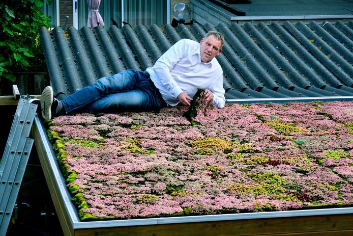 Marcel Eichhorn hoopt volgende maand honderden schuurtjes van een sedumdak te kunnen voorzien.
