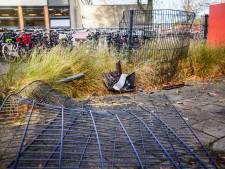 Auto vliegt uit de bocht, raakt schoolhek en botst tegen boom in Eindhoven