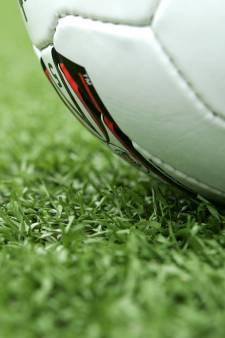 Mollen ruïneren gras van terrein voetbalclub SHO
