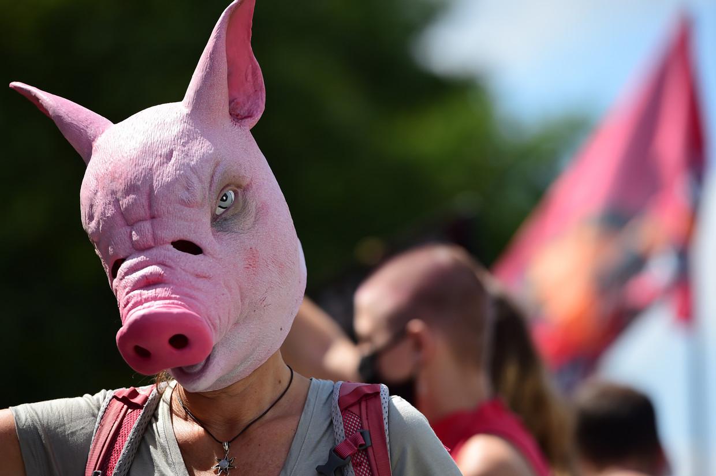 Een demonstrant bij de Tönnies-vleesfabriek.