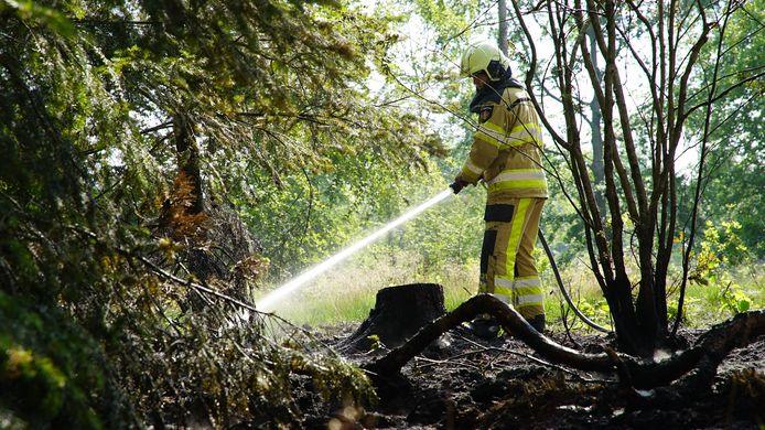 Brandweer Bathmen smoort bosbrand in de kiem in Lettele. Brandweer Deventer komt erbij met extra water.