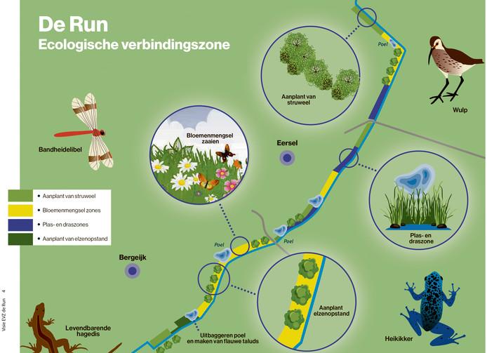 Zo moet de ecologische verbindingszone eruit komen zien.