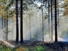 Opnieuw grote brand in Chaamse bossen, tweede keer in week tijd
