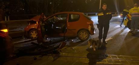 Auto ramt stilstaand verkeer in Harderwijk: twee gewonden, hondje gered uit wrak