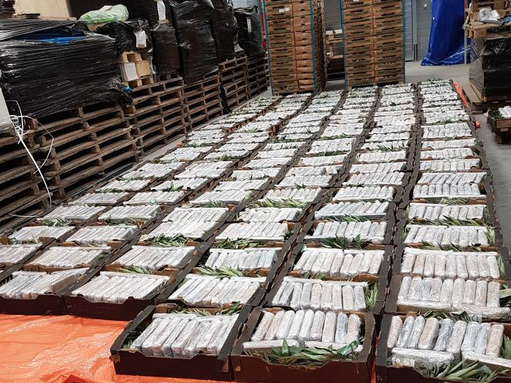 Gigantische cocaïnevangst Alphen is niet uniek: duizenden kilo's 'wit goud' over drugsroute richting Brabant