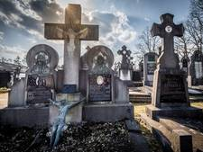 Begraafplaats Putte verpaupert, dorpsplatform wil meer hulp van gemeente