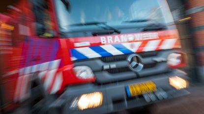 Grote zoekactie naar mogelijke drenkelingen nadat roeiboot omslaat in Nederland, gestaakt