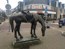 Zadel zoekt paard in Baarn