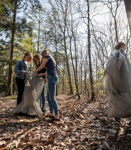 Door de troep het Veldhovense bos niet meer zien